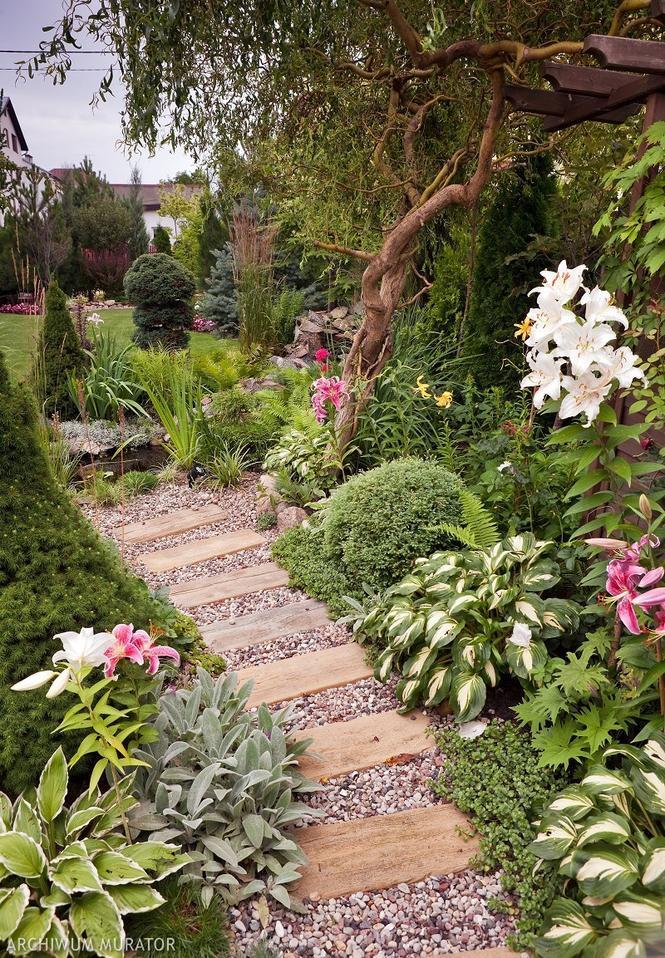 Ścieżka w małym ogrodzie