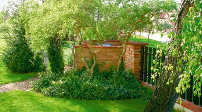 Śmietnik w ogrodzeniu